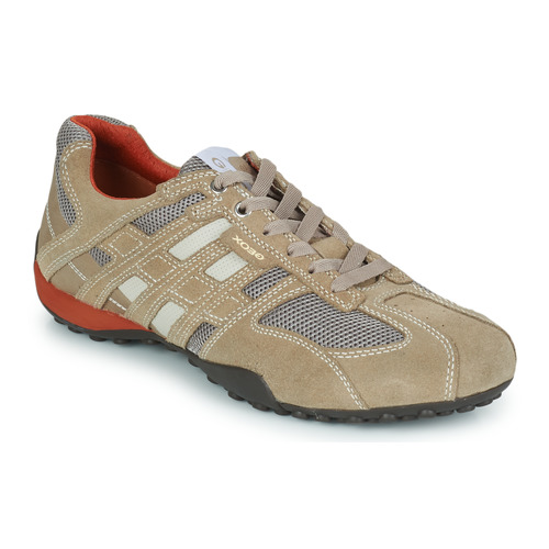 Geox SNAKE Beige  Schuhe Sneaker Low Herren 99,99