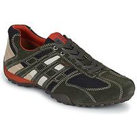 Schuhe Herren Sneaker Low Geox SNAKE Grau