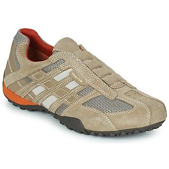 Sneaker Geox SNAKE Beige 350x350