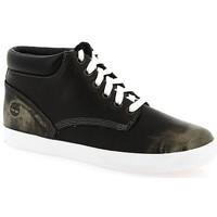 Schuhe Damen Sneaker High Timberland Baskets montantes  Femme New Noir