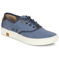 Sneaker Low Timberland AMHERST OXFORD