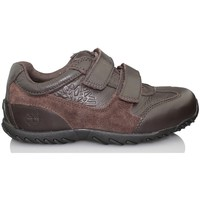 Schuhe Kinder Derby-Schuhe Timberland LEXINGTON AVENUE FTK BRAUN