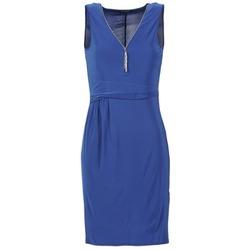 Kleidung Damen Kurze Kleider Morgan ROPOM Blau