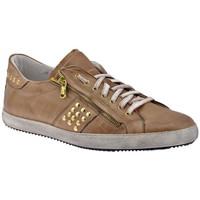 Schuhe Herren Sneaker Low Exton Zip Bulloni turnschuhe Beige