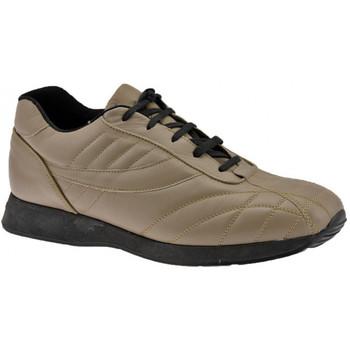Schuhe Herren Sneaker High Docksteps Jogger Lässige Globe sneakers
