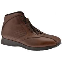 Schuhe Herren Sneaker High Docksteps Globe Ober Lässige sneakers