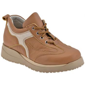 Schuhe Jungen Derby-Schuhe Chicco Fox Lea turnschuhe Braun