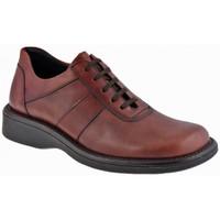 Schuhe Herren Boots Nicola Barbato Campur bergschuhe