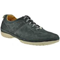 Schuhe Herren Sneaker High Clarks Recline Weiche Lässige Trend sneakers