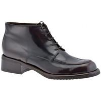 Schuhe Damen Boots Dockmasters Ankle T.20 bergschuhe Multicolor