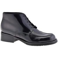 Schuhe Damen Boots Dockmasters Ankle T.20 bergschuhe Schwarz
