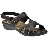 Schuhe Damen Sandalen / Sandaletten Susimoda Anatomisch sandale