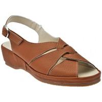 Schuhe Damen Sandalen / Sandaletten Susimoda Anatomische Kalifornien sandale Braun