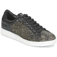 Schuhe Damen Sneaker Low Maruti NOVA Schwarz / Weiss