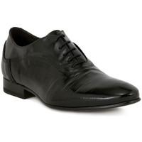 Schuhe Herren Richelieu Eveet RITOS RES MASON    112,9