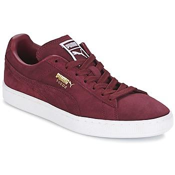 Schuhe Sneaker Low Puma SUEDE CLASSIC + Bordeaux