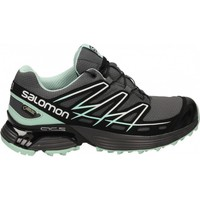 Schuhe Damen Sneaker Low Salomon WINGS FLYTE GTX Grau