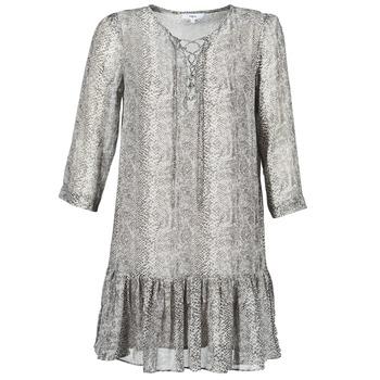 Kleidung Damen Kurze Kleider Suncoo CIARA Grau