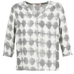 Kleidung Damen Hemden DDP GOSA Maulwurf / Naturfarben