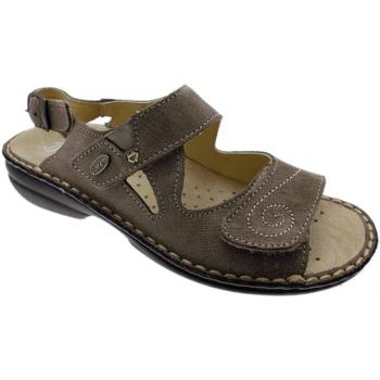 Schuhe Damen Sandalen / Sandaletten Calzaturificio Loren LOM2595ta tortora