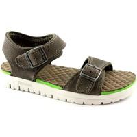 Schuhe Mädchen Sandalen / Sandaletten Timberland TIMBER 2170A graue Schuhe Baby Sandalen verstellbaren Schnallen Grigio