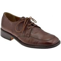 Schuhe Herren Richelieu Bocci 1926 KlassischeGiroformarichelieu Braun