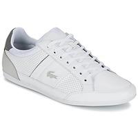 Schuhe Herren Sneaker Low Lacoste CHAYMON 316 1 Weiss / Grau