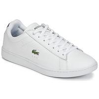 Sneaker Low Lacoste CARNABY EVO G316 7 SPM