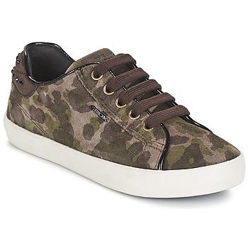 Schuhe Mädchen Sneaker Low Geox KIWI GIRL Grün