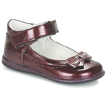 Schuhe Mädchen Ballerinas Citrouille et Compagnie FRIZZY Bordeaux