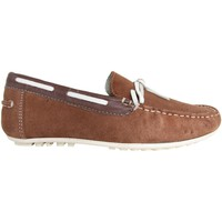 Schuhe Herren Slipper MTNG 83515 Marrón