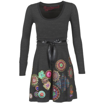 Kleidung Damen Kurze Kleider Desigual RIDOUBA Grau