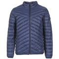 Kleidung Herren Daunenjacken Jack & Jones CALL CORE Marine