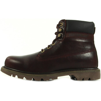 Boots Caterpillar Colorado Burgundy