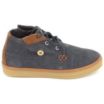 Schuhe Kinder Sneaker High Faguo Wattle Suede C Gris Grau