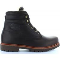 Schuhe Herren Low Boots Panama Jack PANAMA 03 AVIATOR C1 Marr?n