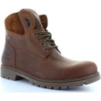 Schuhe Herren Boots Panama Jack AMUR GTX C8 Marr?n