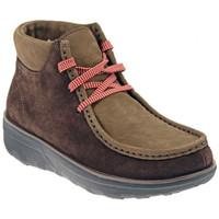 Low Boots FitFlop CHUK KAMOC BOOT bergschuhe