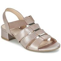 Schuhe Damen Sandalen / Sandaletten Caprice RIJOULE Rose