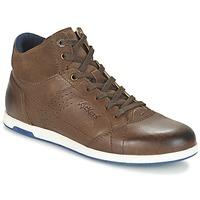 Sneaker High Kickers BARRACUDA