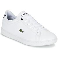 Schuhe Kinder Sneaker Low Lacoste CARNABY EVO BL 1 Weiss