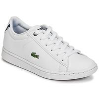Sneaker Low Lacoste CARNABY EVO BL 1