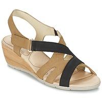 Schuhe Damen Sandalen / Sandaletten Rondinaud COLAGNE Beige / Schwarz