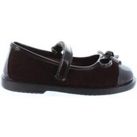 Schuhe Mädchen Ballerinas Garatti PR0064 Marr?n