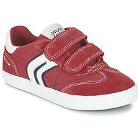 Schuhe Jungen Sneaker Low Geox J KIWI B. M Rot / Marine