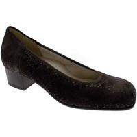 Schuhe Damen Pumps Calzaturificio Loren LOP5414ma marrone