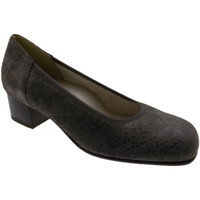 Schuhe Damen Pumps Calzaturificio Loren LOP5414to tortora