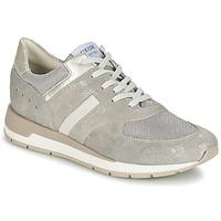 Schuhe Damen Sneaker Low Geox SHAHIRA A Grau