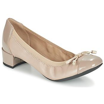 Schuhe Damen Pumps Geox D CAREY A Maulwurf