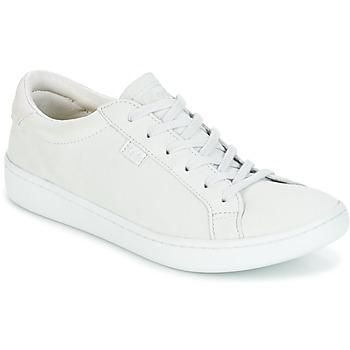 Schuhe Damen Sneaker Low Keds ACE MONO Grau